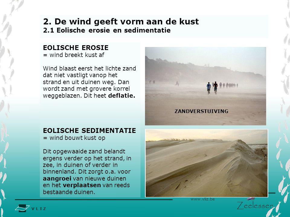 2. De wind geeft vorm aan de kust