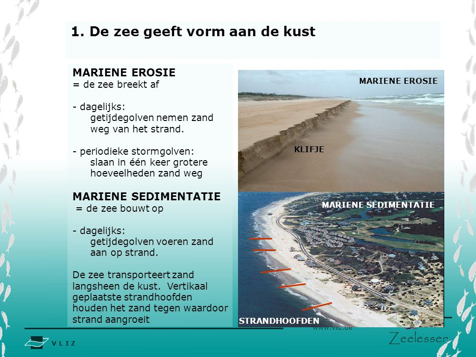 1. De zee geeft vorm aan de kust