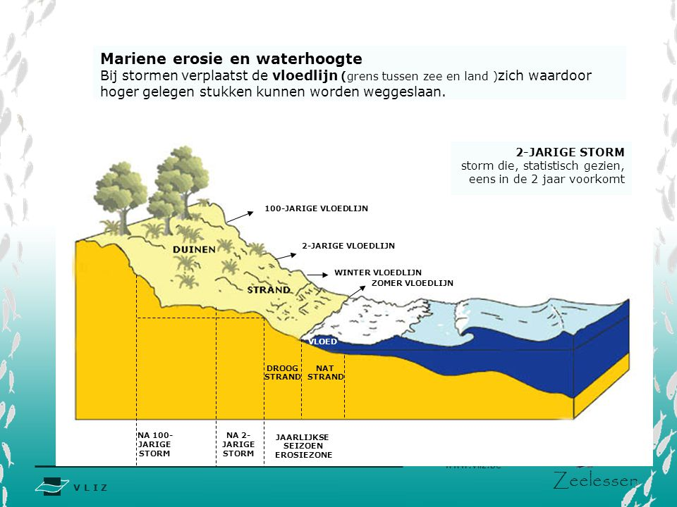 Mariene erosie en waterhoogte