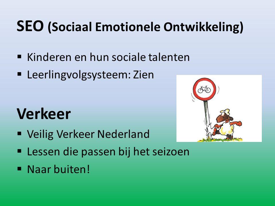 SEO (Sociaal Emotionele Ontwikkeling)