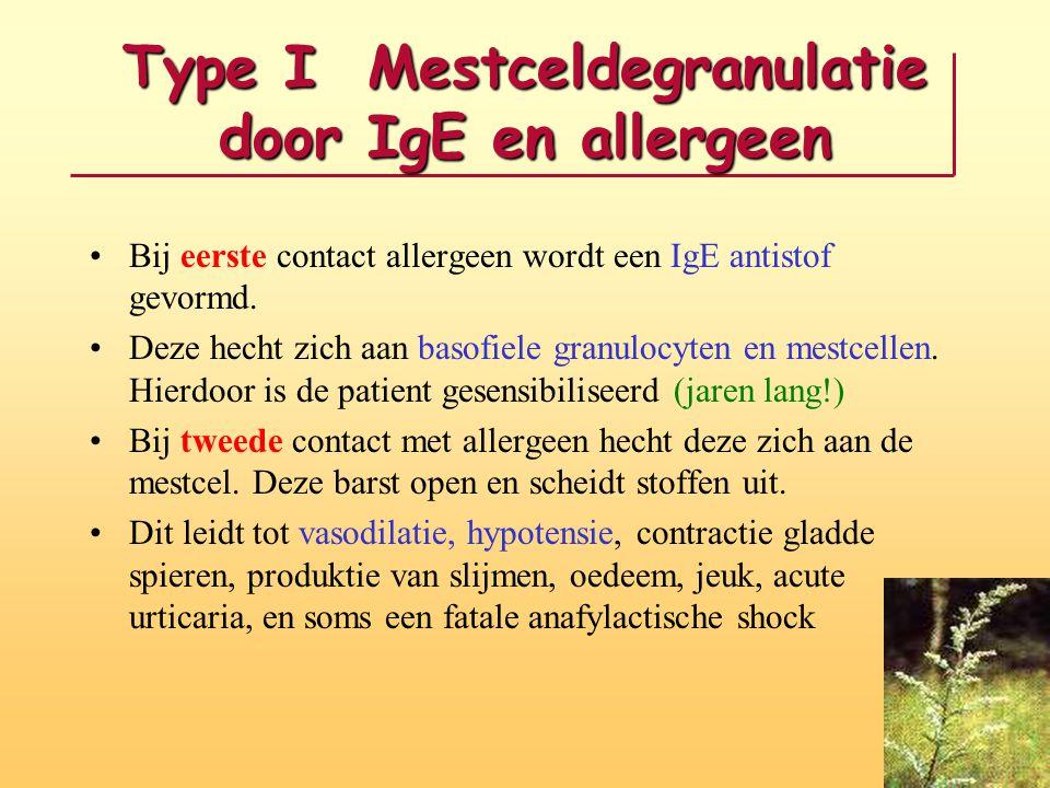 Type I Mestceldegranulatie door IgE en allergeen
