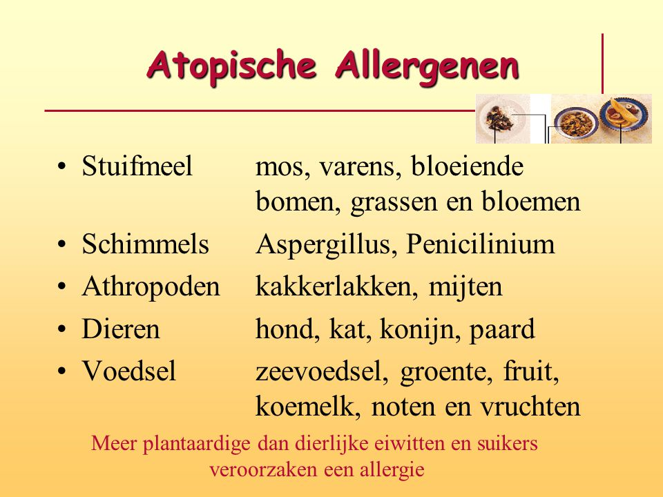 allergie suiker