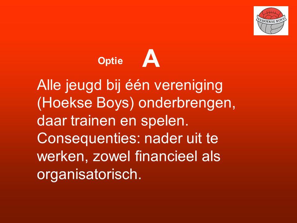 A Optie. Alle jeugd bij één vereniging (Hoekse Boys) onderbrengen, daar trainen en spelen.