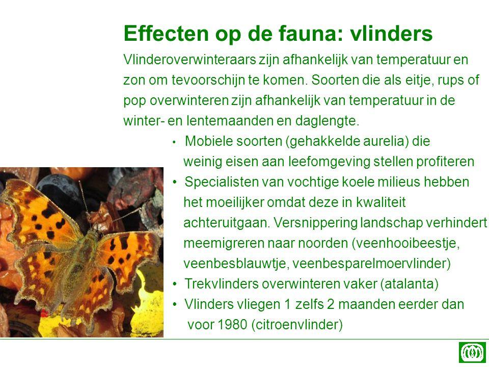 Effecten op de fauna: vlinders