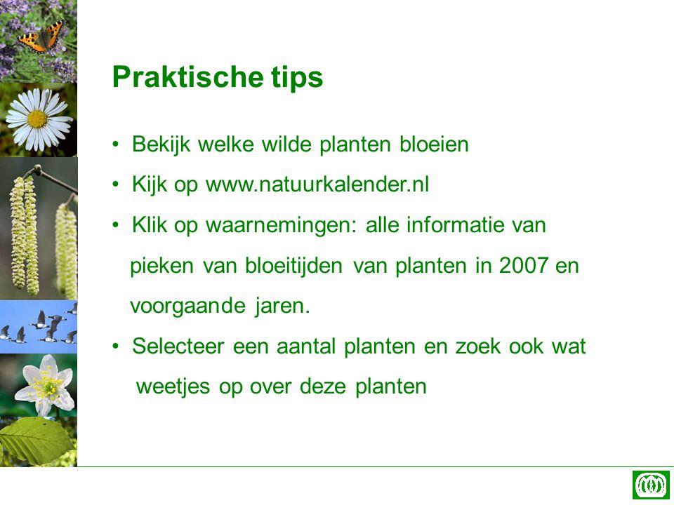Praktische tips Bekijk welke wilde planten bloeien