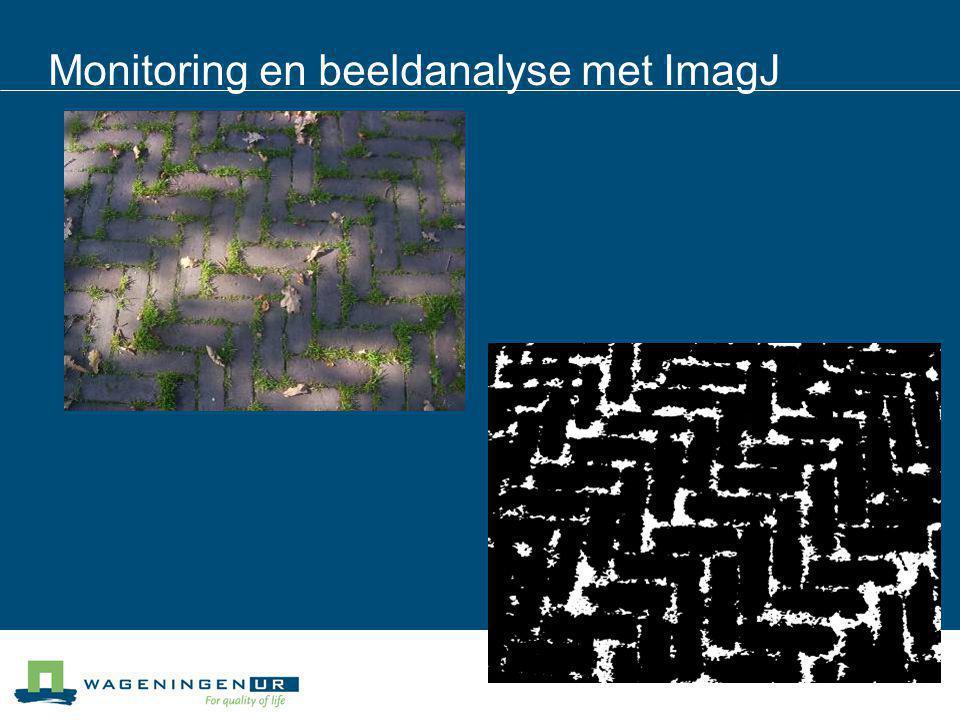 Monitoring en beeldanalyse met ImagJ