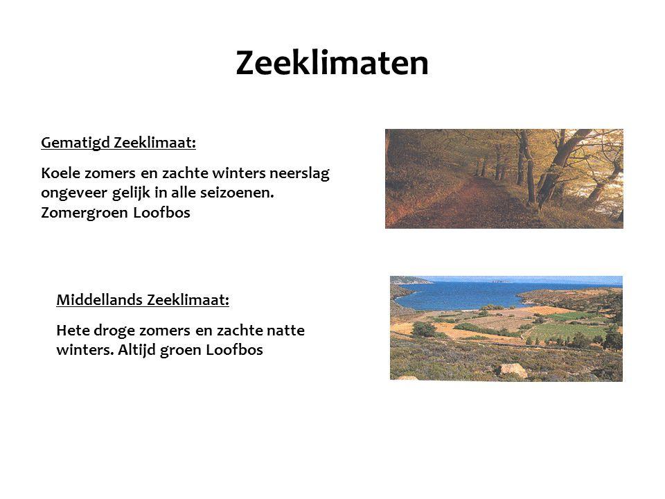 Zeeklimaten Gematigd Zeeklimaat: