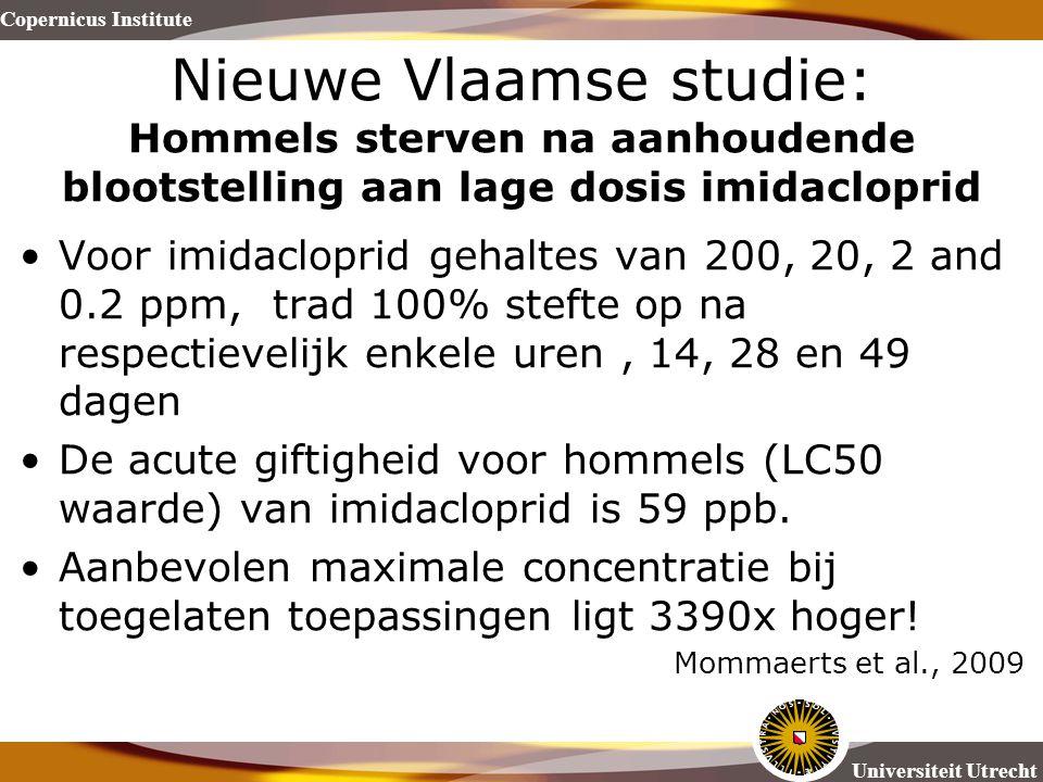 Nieuwe Vlaamse studie: Hommels sterven na aanhoudende blootstelling aan lage dosis imidacloprid