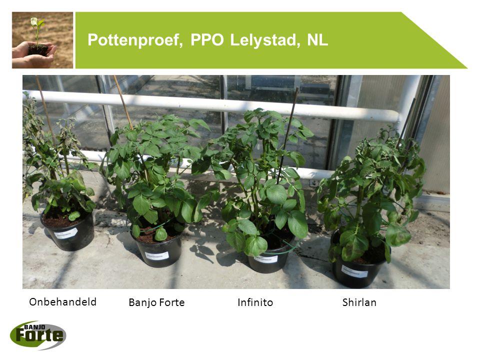 Pottenproef, PPO Lelystad, NL