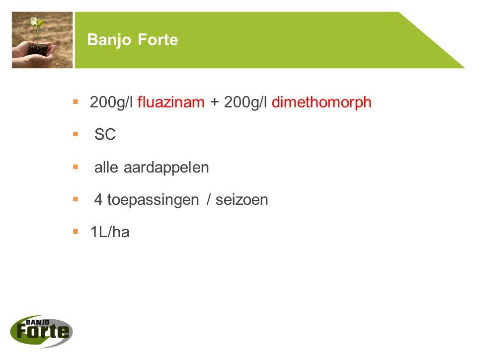 Banjo Forte 200g/l fluazinam + 200g/l dimethomorph SC alle aardappelen