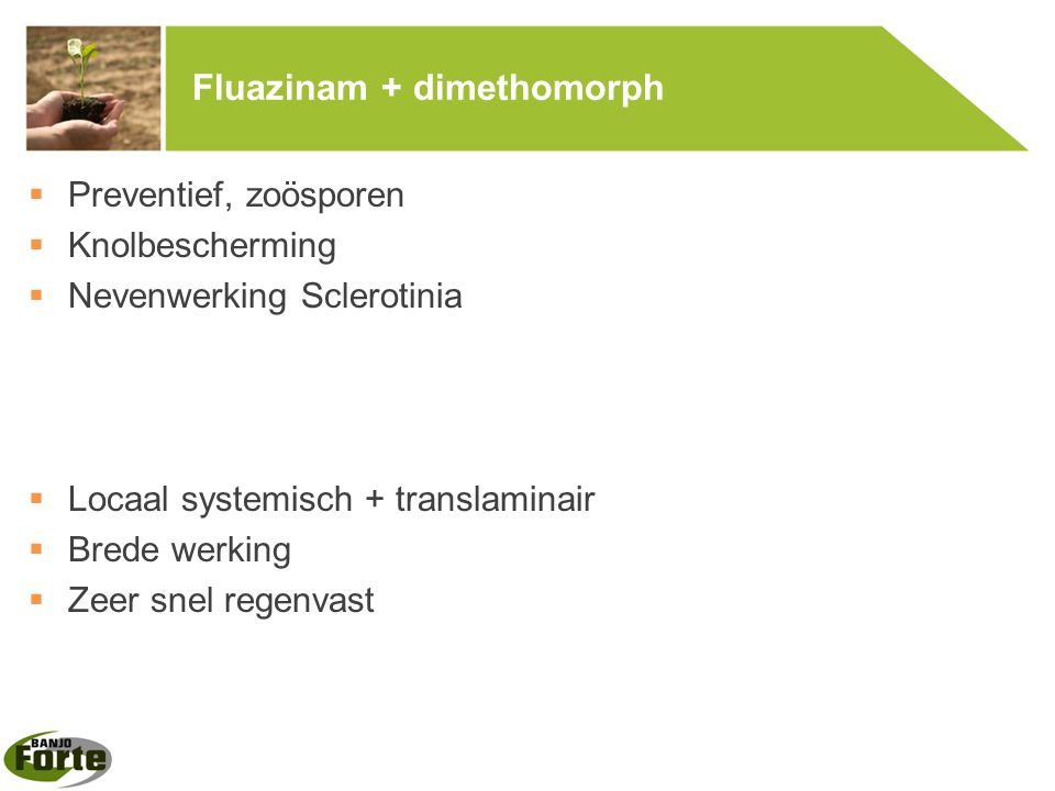 Fluazinam + dimethomorph