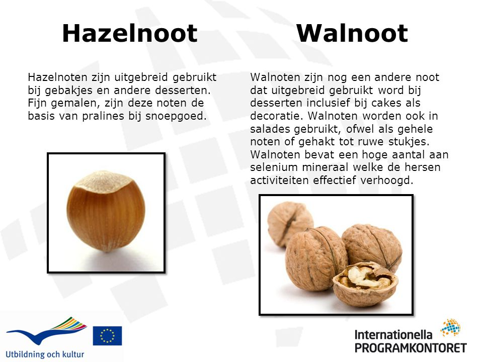 Hazelnoot Walnoot.