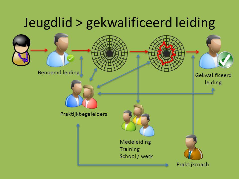 Jeugdlid > gekwalificeerd leiding