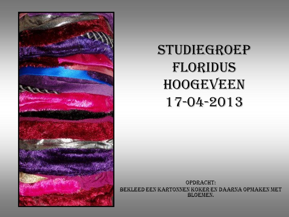 Studiegroep Floridus Hoogeveen 17-04-2013