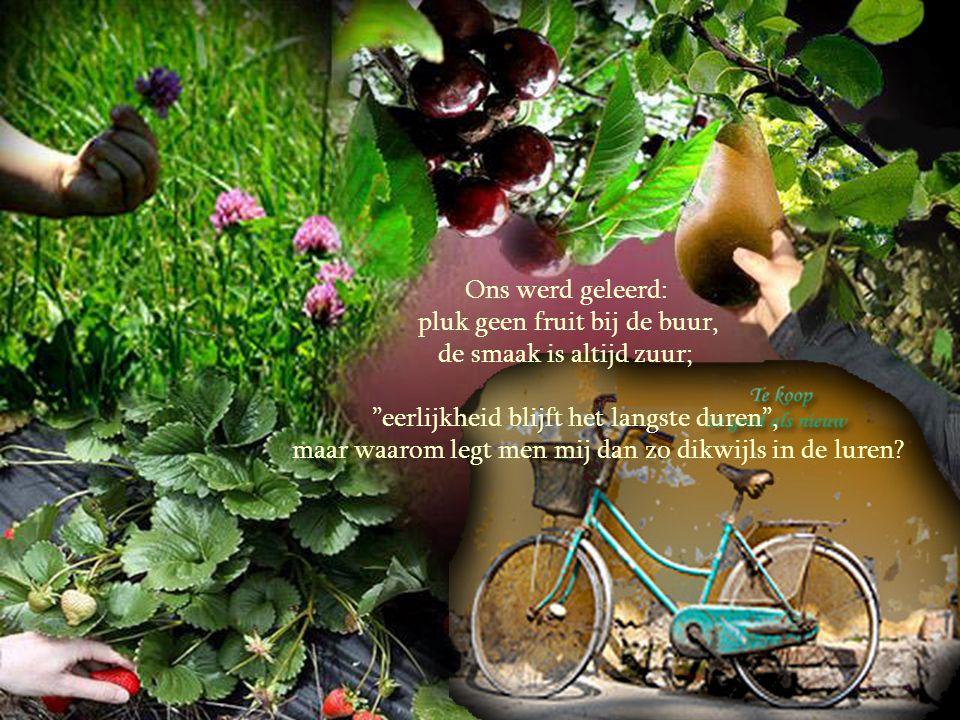 pluk geen fruit bij de buur, de smaak is altijd zuur;