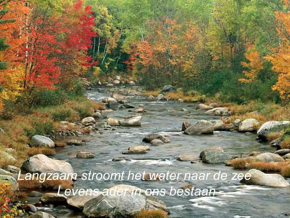 Langzaam stroomt het water naar de zee Levens ader in ons bestaan