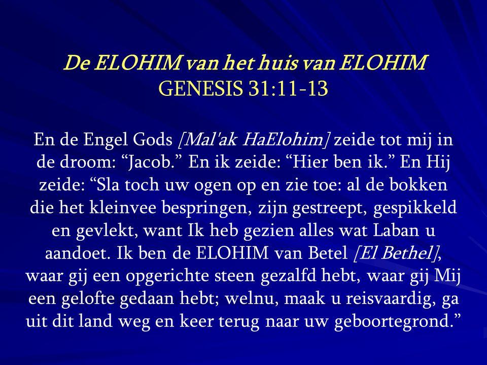 De ELOHIM van het huis van ELOHIM
