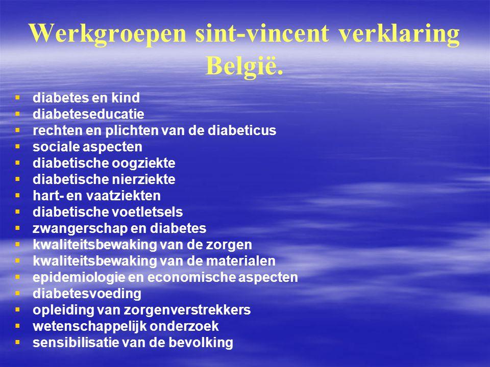 Werkgroepen sint-vincent verklaring België.