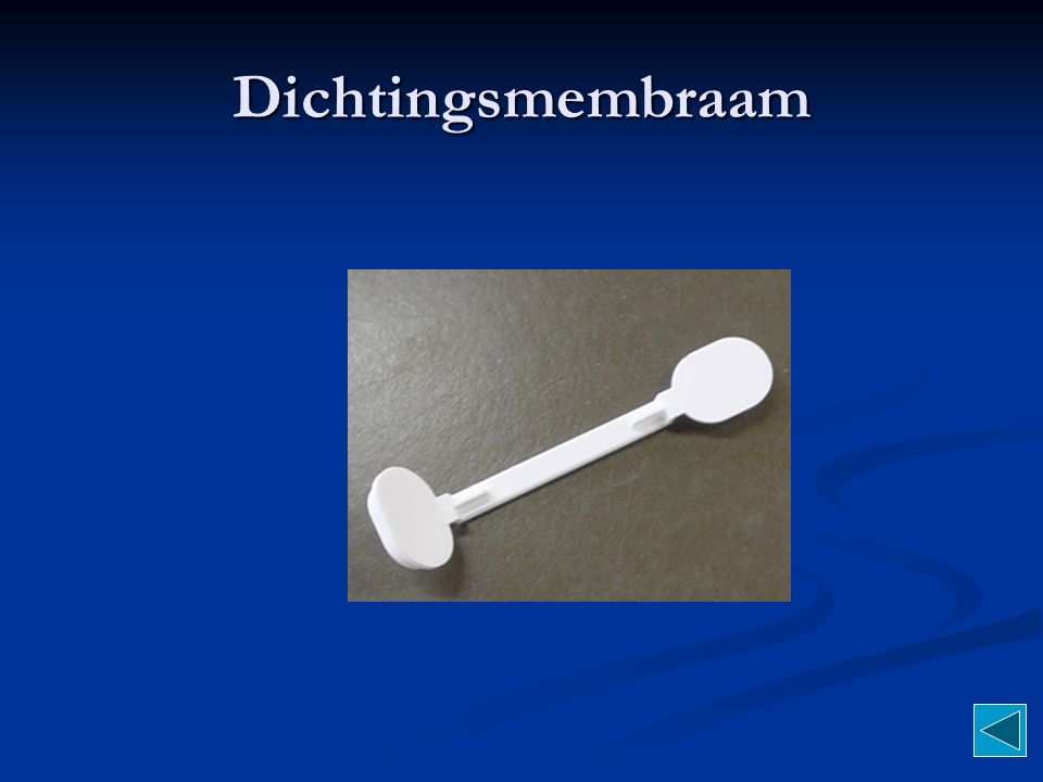 Dichtingsmembraam