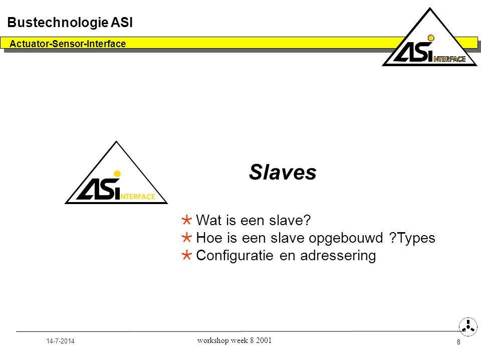 Slaves Wat is een slave Hoe is een slave opgebouwd Types