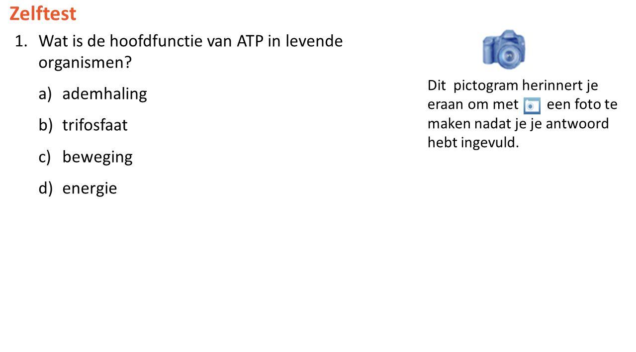 Zelftest Wat is de hoofdfunctie van ATP in levende organismen