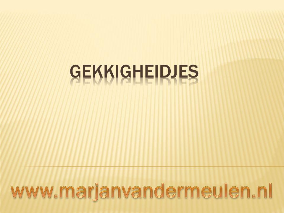 Gekkigheidjes www.marjanvandermeulen.nl