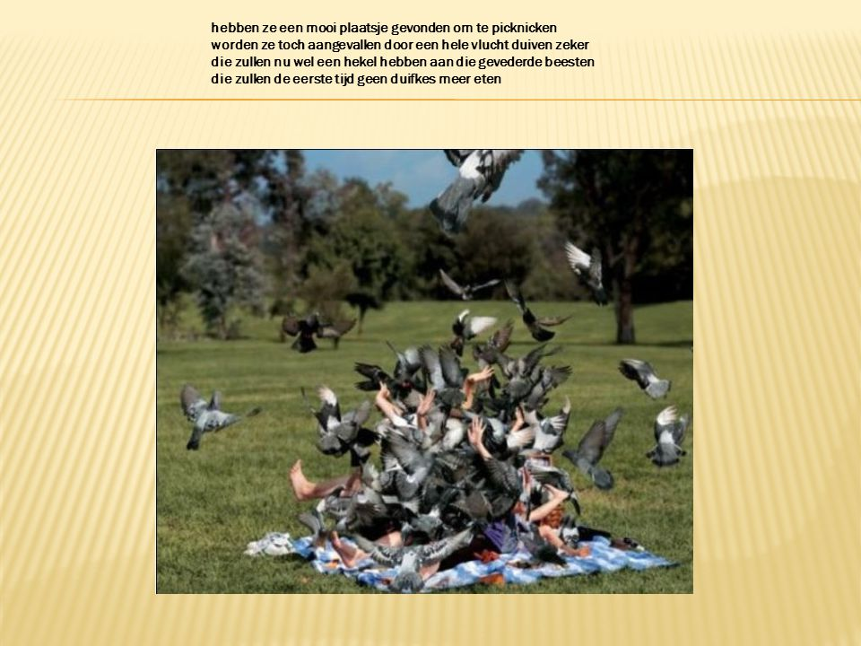 hebben ze een mooi plaatsje gevonden om te picknicken worden ze toch aangevallen door een hele vlucht duiven zeker die zullen nu wel een hekel hebben aan die gevederde beesten die zullen de eerste tijd geen duifkes meer eten