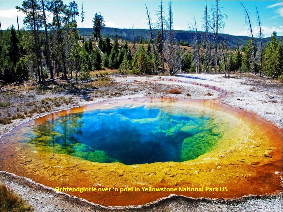 Ochtendglorie over 'n poel in Yellowstone National Park US