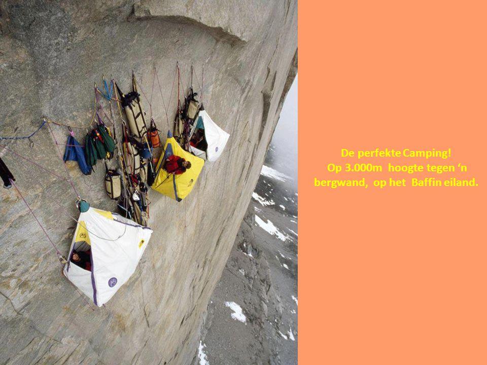 Op 3.000m hoogte tegen 'n bergwand, op het Baffin eiland.