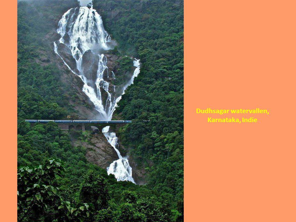 Dudhsagar watervallen,