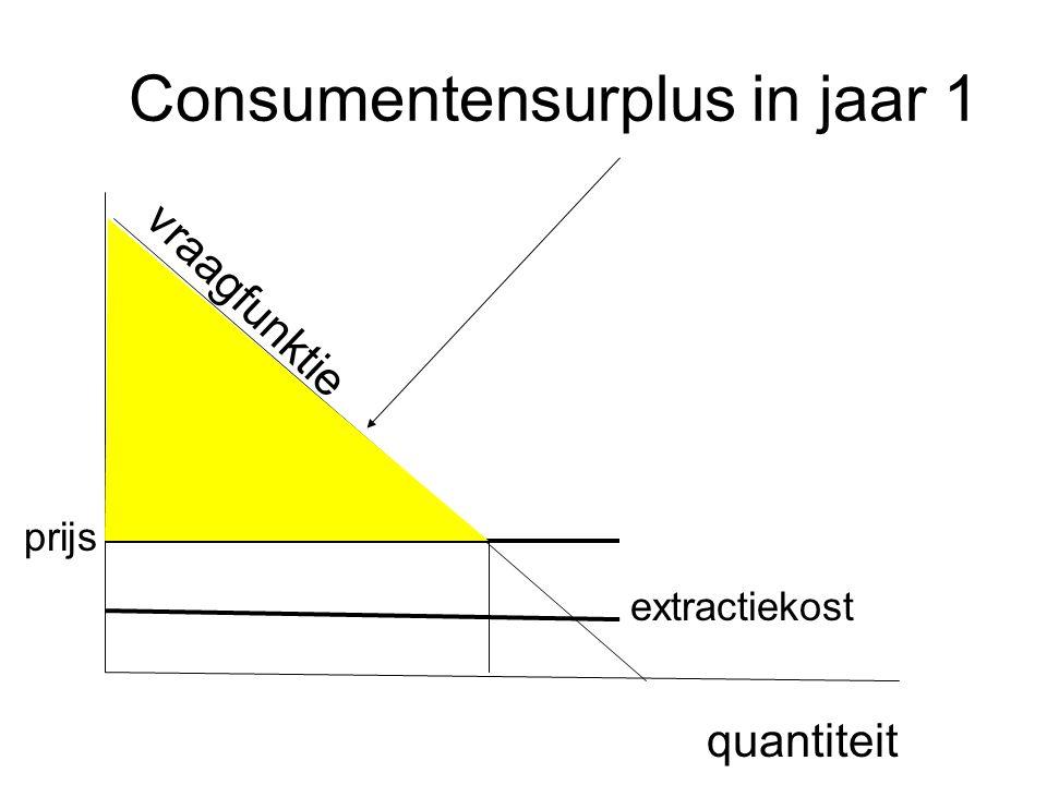 Consumentensurplus in jaar 1