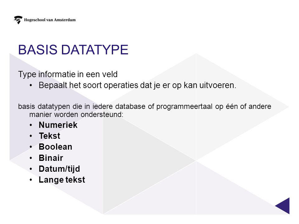 Basis datatype Type informatie in een veld