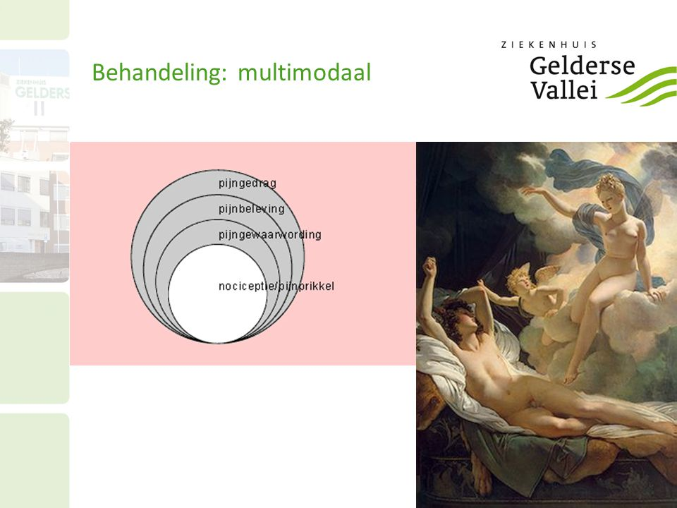 Behandeling: multimodaal