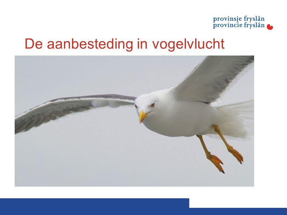 De aanbesteding in vogelvlucht