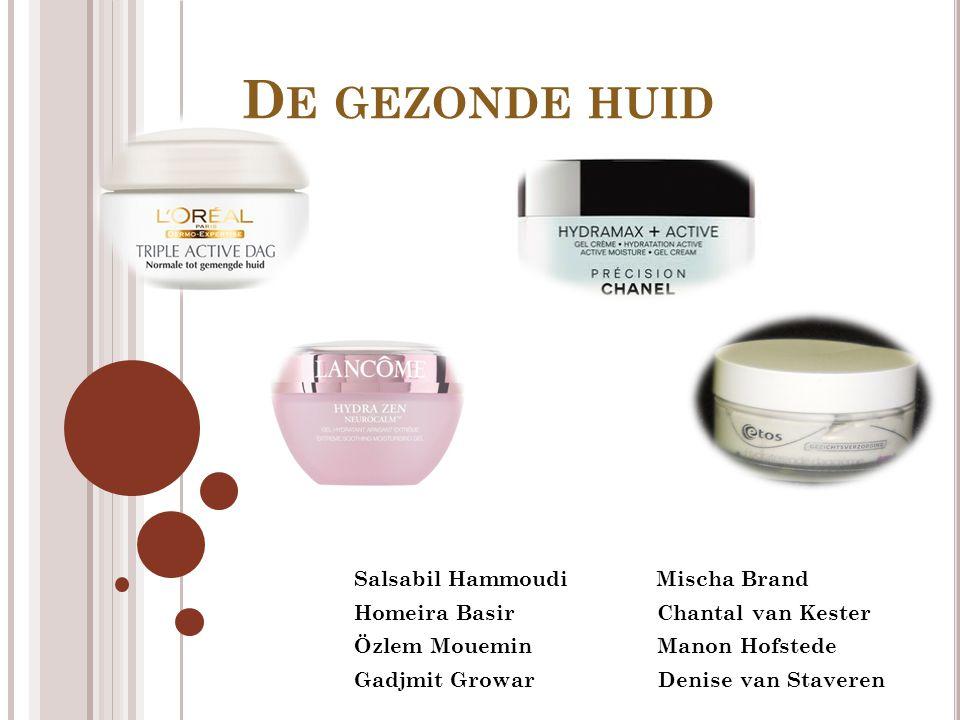 De gezonde huid Salsabil Hammoudi Mischa Brand