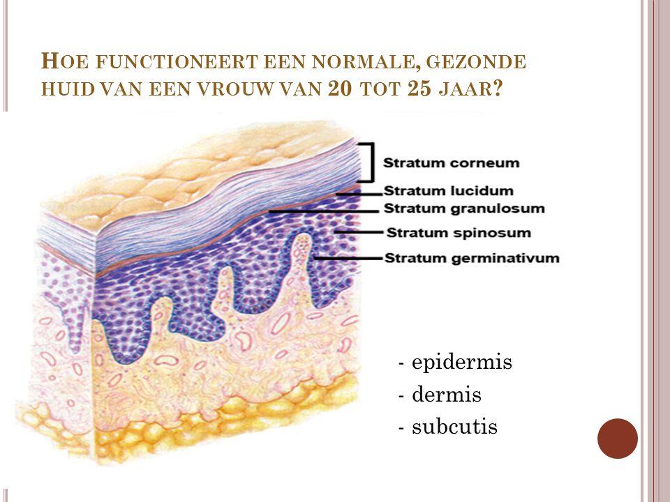 Hoe functioneert een normale, gezonde huid van een vrouw van 20 tot 25 jaar