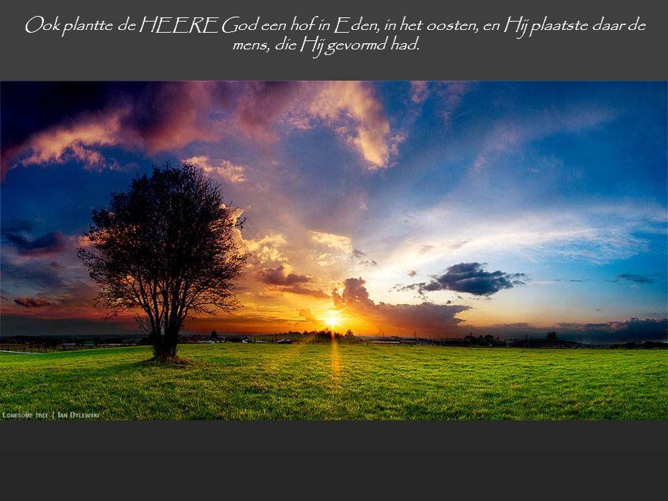 Ook plantte de HEERE God een hof in Eden, in het oosten, en Hij plaatste daar de mens, die Hij gevormd had.