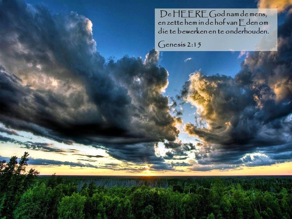 De HEERE God nam de mens, en zette hem in de hof van Eden om die te bewerken en te onderhouden.