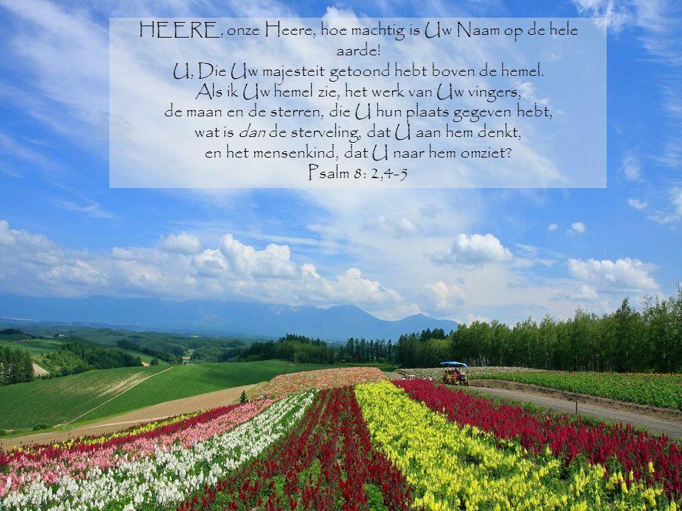 HEERE, onze Heere, hoe machtig is Uw Naam op de hele aarde!