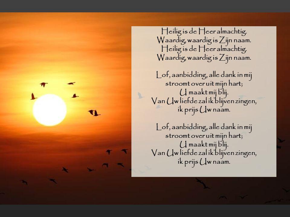 Lof, aanbidding, alle dank in mij stroomt over uit mijn hart;