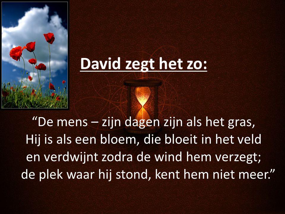 David zegt het zo:
