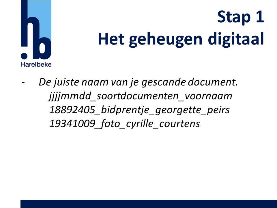 Stap 1 Het geheugen digitaal De juiste naam van je gescande document.