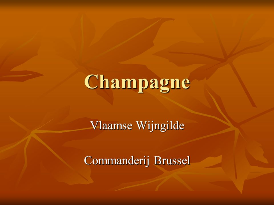 Vlaamse Wijngilde Commanderij Brussel