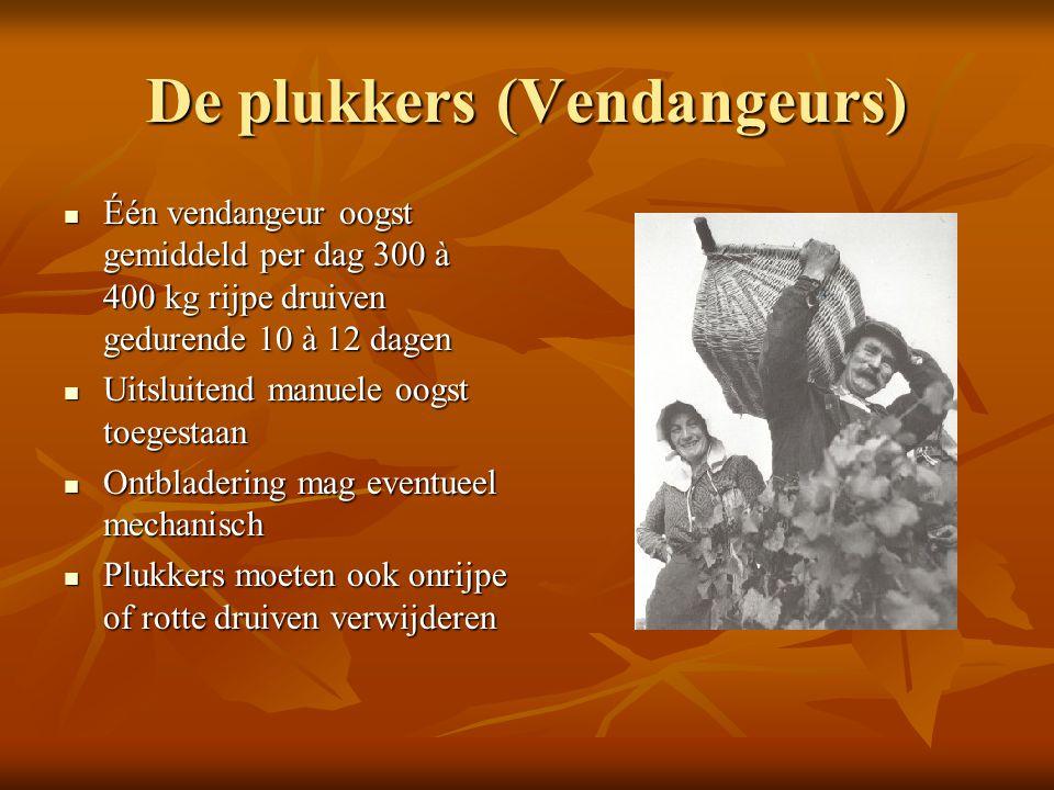 De plukkers (Vendangeurs)