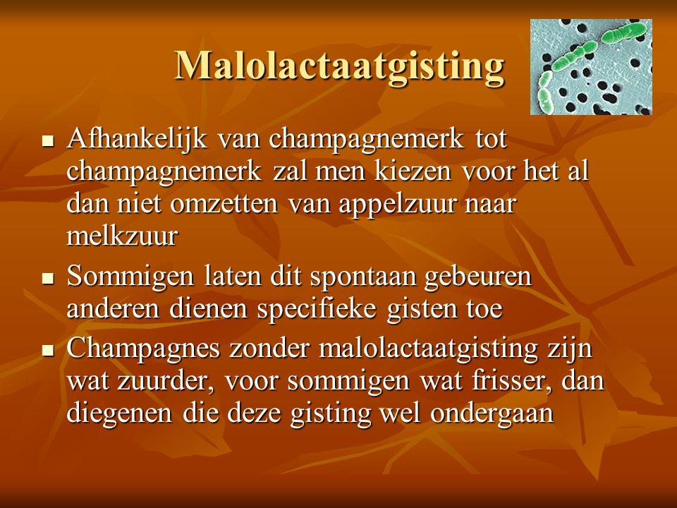 Malolactaatgisting Afhankelijk van champagnemerk tot champagnemerk zal men kiezen voor het al dan niet omzetten van appelzuur naar melkzuur.