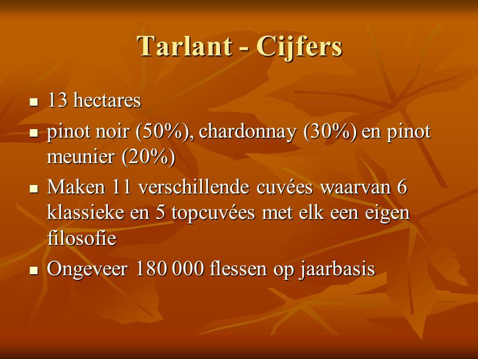 Tarlant - Cijfers 13 hectares