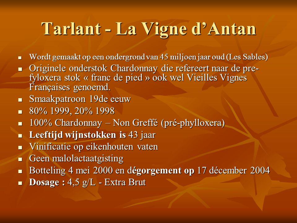 Tarlant - La Vigne d'Antan