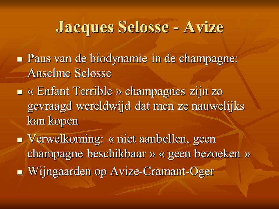 Jacques Selosse - Avize