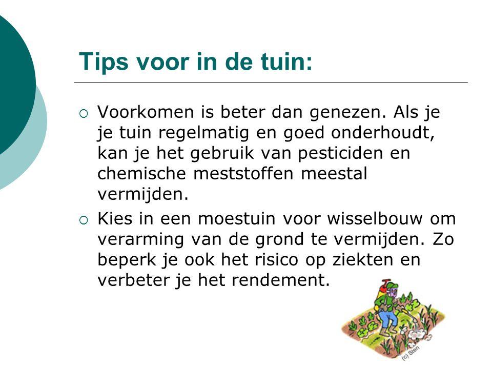 Tips voor in de tuin: