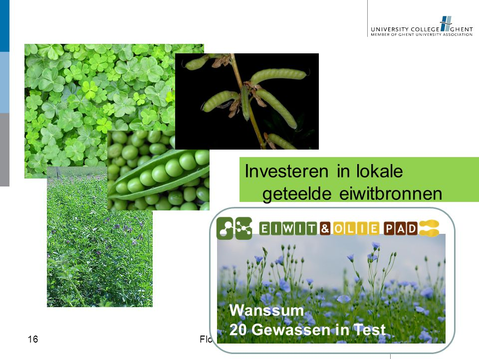 Investeren in lokale geteelde eiwitbronnen